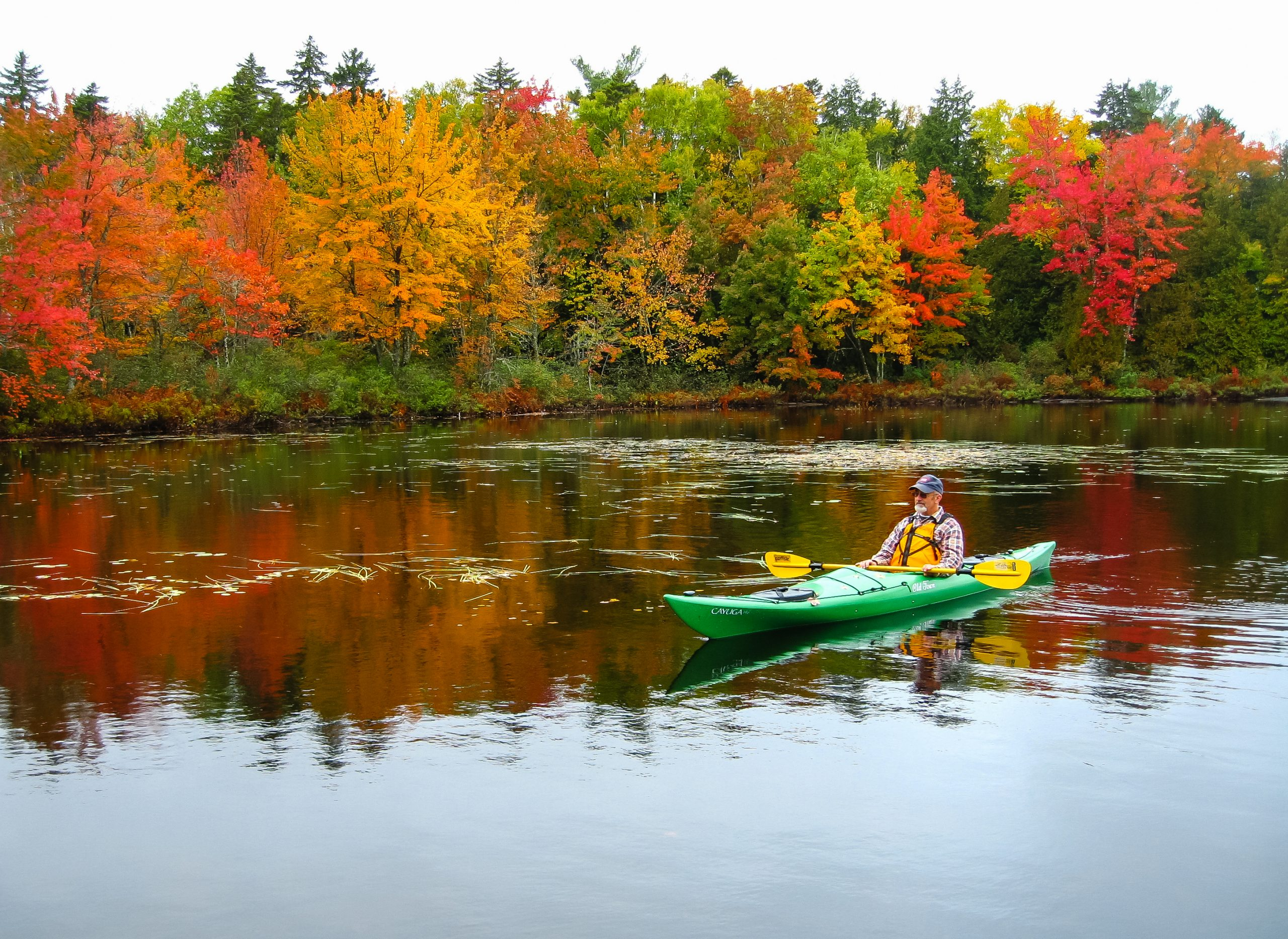 Peaceful Kayaking in Maine